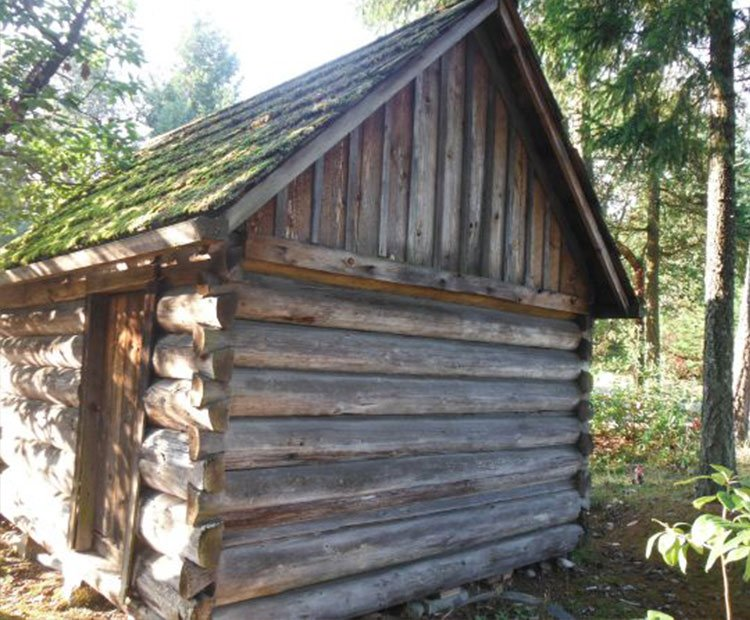 A small log cabin from the back view