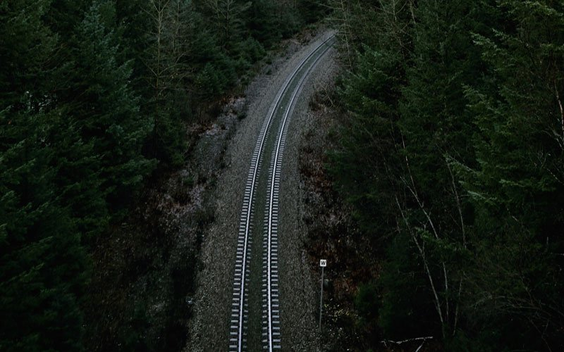 A train track cutting through forest